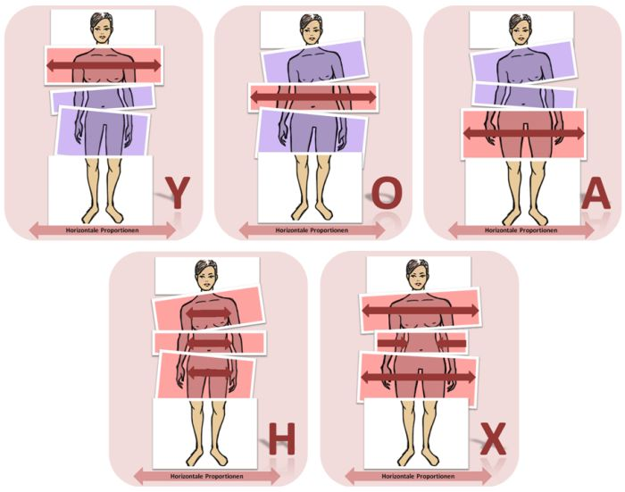 figurtypen-proportionen-horizontal-700-komp